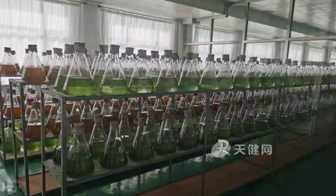 """水产养殖,益生菌""""上岗"""""""